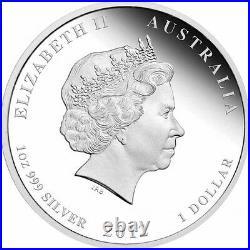 2 x 2012 Lunar Year of The Dragon 1oz Silver Coin Australia Perth Mint